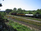 Bayview_Junction_21.08.05_9847.jpg