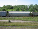 Bayview_Junction_21.08.05_9869.jpg