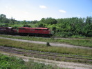 Bayview_Junction_21.08.05_9879.jpg