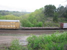 Bayview_Junction_23.05.05_5499.jpg 5