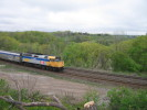 Bayview_Junction_23.05.05_5525.jpg 6