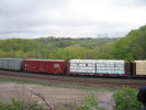 Bayview_Junction_23.05.05_5547.jpg 6
