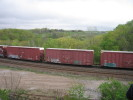 Bayview_Junction_23.05.05_5562.jpg 6