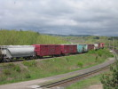 Bayview_Junction_23.05.05_5597.jpg