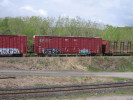 Bayview_Junction_23.05.05_5614.jpg 2
