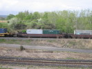 Bayview_Junction_23.05.05_5623.jpg 16