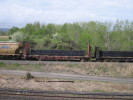 Bayview_Junction_23.05.05_5631.jpg 1