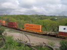 Bayview_Junction_23.05.05_5648.jpg 5