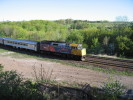 Bayview_Junction_26.05.05_6144.jpg 1