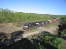 Bayview_Junction_26.05.05_6156.jpg