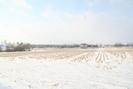 Breslau_22.02.09_5912.jpg 12