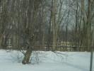 Deerfield_22.12.04_4593.jpg 10