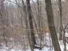 Deerfield_22.12.04_4602.jpg 2