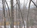 Deerfield_22.12.04_4606.jpg 12