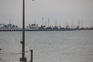 Galveston-TX_01.01.20_8087.jpg