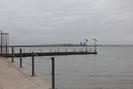 Galveston-TX_01.01.20_8098.jpg