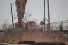 Galveston-TX_01.01.20_8133.jpg