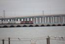 Galveston-TX_01.01.20_8165.jpg