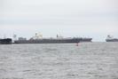 Galveston-TX_01.01.20_8335.jpg