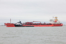Galveston-TX_01.01.20_8343.jpg
