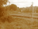 Guelph_28.09.04_9607.jpg