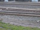 Guelph_Junction_05.05.04_1305.jpg