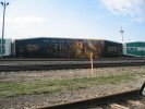 Guelph_Junction_23.04.04_0372.jpg 39