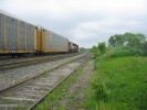 Guelph_Junction_25.05.04_2552.jpg