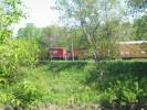 Ingersoll_16.05.04_2193.jpg 8