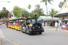Key_West-FL_11.01.20_3071.jpg 1