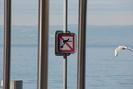 Montreux_03.01.12_2061.jpg 1