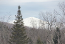 Mount_Washington_01.03.16_5020.jpg 2