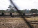 Nairobi_30.01.06_5953.jpg