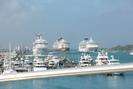 Nassau-BS_12.01.20_3410.jpg 1