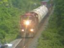 Newtonville_30.06.04_3984.jpg 7