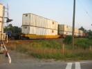 Speyside_12.09.04_8715.jpg 16